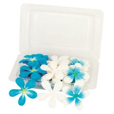 Irene's Garden Pack O'Plumerias (Set of 50)
