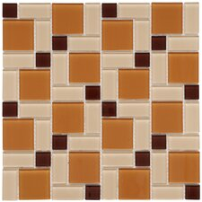 "Ambit 11-3/4"" x 11-3/4"" Polished Glass Block Mosaic in Suntan"