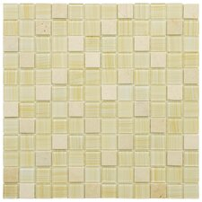 """Chroma 7/8"""" x 7/8"""" Square Glass and Stone Mosaic Wall Tile in Macadamia"""