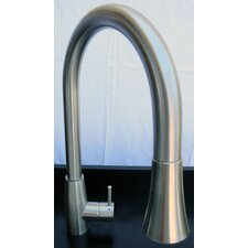 Single Handle Single Hole Kitchen Faucet with Pull Down Spray