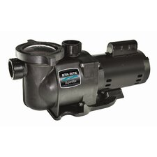 115/230V StaRite Super Max Pool Pump Set