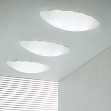 Nubia PP63 Wall/Ceiling Light