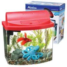 Mini Bowl Desktop Aquarium Kit