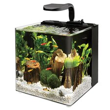 <strong>Aqueon</strong> 4 Gallon Evolve Aquarium Bowl kit