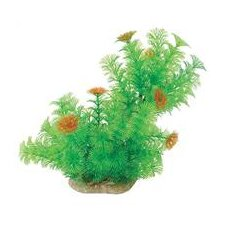 Natural Elements Cabomba Aquarium Ornament in Green / Orange