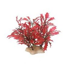 Natural Elements Crimson Water Holly Aquarium Ornament in Crimson