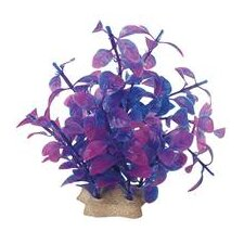 Natural Elements Ludwigia Technicolor Aquarium Ornament in Purple