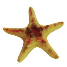 Design Elements Mini Chip Starfish Ornament