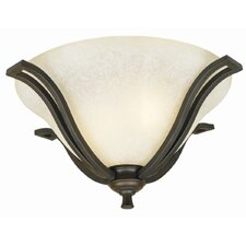 <strong>Design House</strong> Ironwood 2 Light Flush Mount