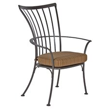 Monterra Dining Arm Chair with Cushion