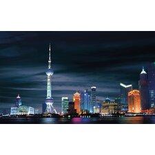 Portfolio II Shanghai Wall Mural