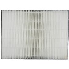 Replacement HEPA Filter