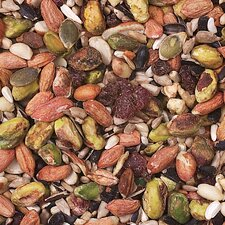 Woodpecker Nuthatch Food