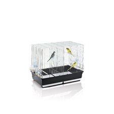 Tasha Bird Cage in Chrome