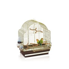 Elisa Bird Cage in Brass