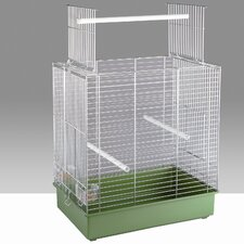 Dora Special Cockatiel and Parakeet Cage in Chrome
