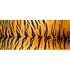<strong>Bungalow Flooring</strong> Tiger Decorative Mat