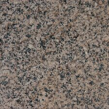 "12"" x 12"" Polished Granite Tile in Desert Brown"