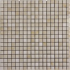 "<strong>MS International</strong> 12"" x 12"" Polished Marble Tile in Crema Marfil"