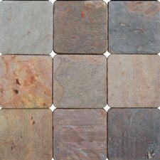 "4"" x 4"" Tumbled Slate Tile in Multi Classic"