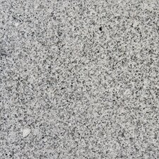 "12"" x 12"" Polished Granite Tile in Bianco Catalina"