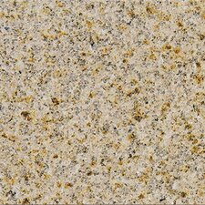 "31"" x 18"" Polished Granite Tile in Giallo Fantasia"