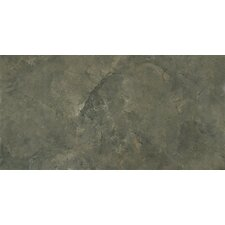 "<strong>MS International</strong> Pietra Lagos 24"" x 12"" Porcelain Polished Floor and Wall Tile in Glazed"
