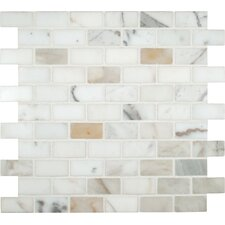 "Calacatta Gold 2"" x 1"" Polished Marble Mesh Mounted Mosaic Tile in White"