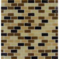 "Desert Spring 12"" x 12"" Glass Mesh Mounted Mosaic Tile in Multi"