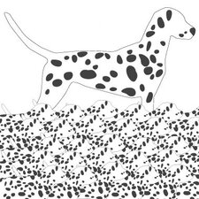 Animals Dalmation Pattern Stretched Canvas Art