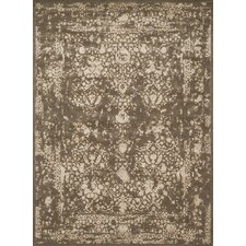 Journey Dark Taupe/Ivory Outdoor Rug