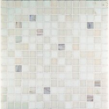 "<strong>Casa Italia</strong> Madreperla 13"" x 13"" Glass Mosaic in Bianco Mix"