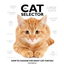 The Cat Selector; How to Choose the Right Cat for You