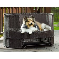 Dog Day Bed with Outdoor Cushion