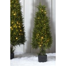 Lighted Cypress Growers Floor Plant in Pot