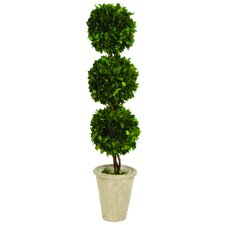 <strong>Sage & Co.</strong> Triple Ball Topiary in Planter