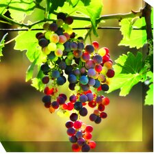 Grapes #3 Photographic Print on Canvas