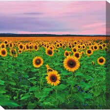 Sunflowers Photographic Print on Canvas