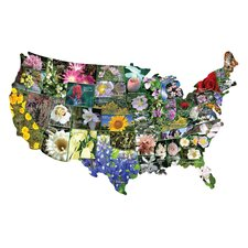 <strong>TDC Games</strong> State Flowers USA Shaped Puzzle