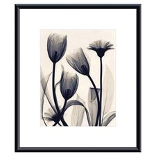 <strong>Barewalls</strong> Tulip and Daisy Metal Framed Art Print