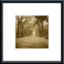 Central Park by Wampler Metal Framed Art Print