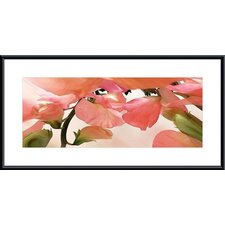 <strong>Barewalls</strong> Sweet Peas #1 Metal Framed Art Print