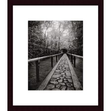 <strong>Barewalls</strong> Stone Path Wood Framed Art Print