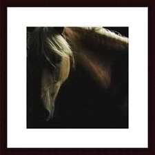 'Spirit Horse' by Tony Stromberg Framed Photographic Print