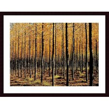 <strong>Barewalls</strong> Trees Wood Framed Art Print