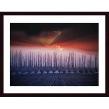 <strong>Barewalls</strong> Winter Sunset Wood Framed Art Print