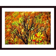 <strong>Barewalls</strong> Charred Tree Wood Framed Art Print