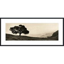 <strong>Barewalls</strong> Black Oak Tree Metal Framed Art Print
