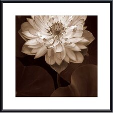 Lotus Welcome Metal Framed Art Print