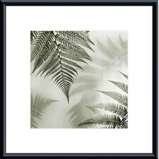 <strong>Barewalls</strong> Ferns No. 1 Metal Framed Art Print